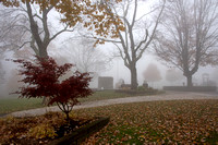 Blowing Rock City Park in the fog