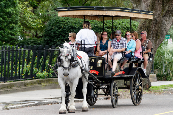 Tourists enjoying the ride on Meeting Street